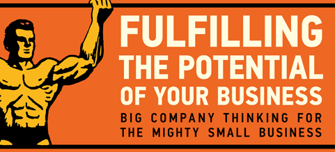 """""""Fulfilling The Potential Of Your Business"""" Nominated For 2012 Small Business Book Award"""