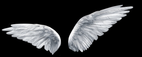 Angel Investing – 11 Interesting Facts and Figures